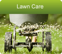 Lawncare in central Indiana including Marion, Johnson, Hamilton counties